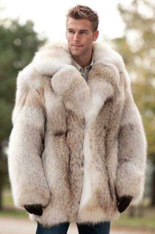 Coyote Fur Coat >> Zack Coyote Fur Coat