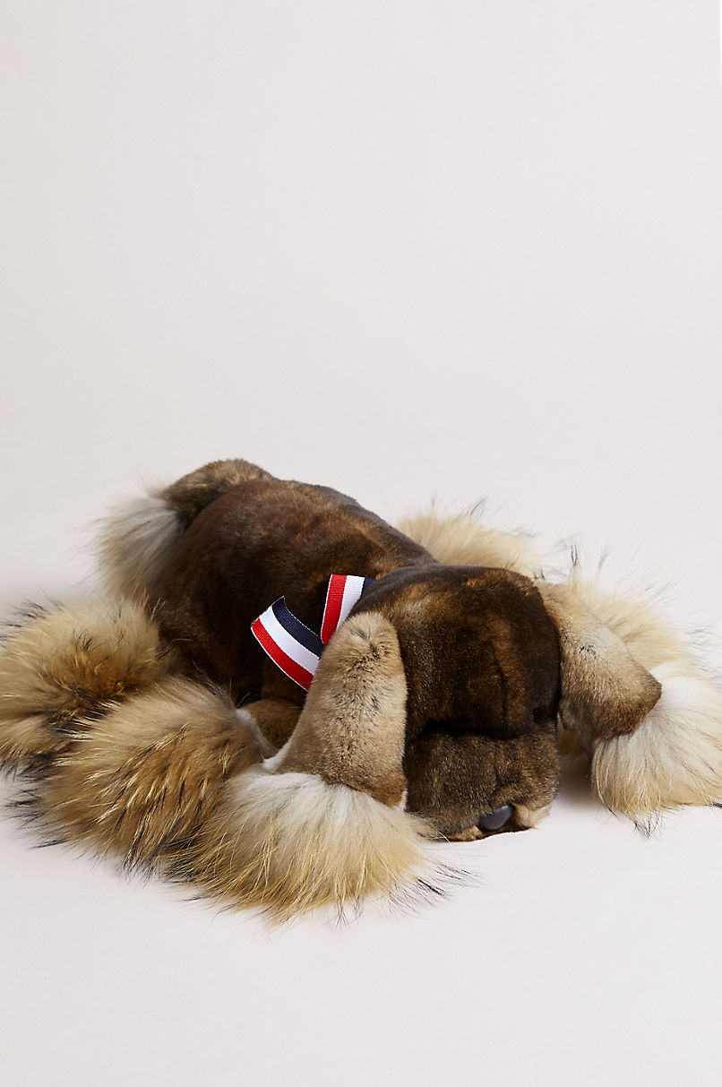 Rex Rabbit Fur Puppy with Raccoon Fur Trim