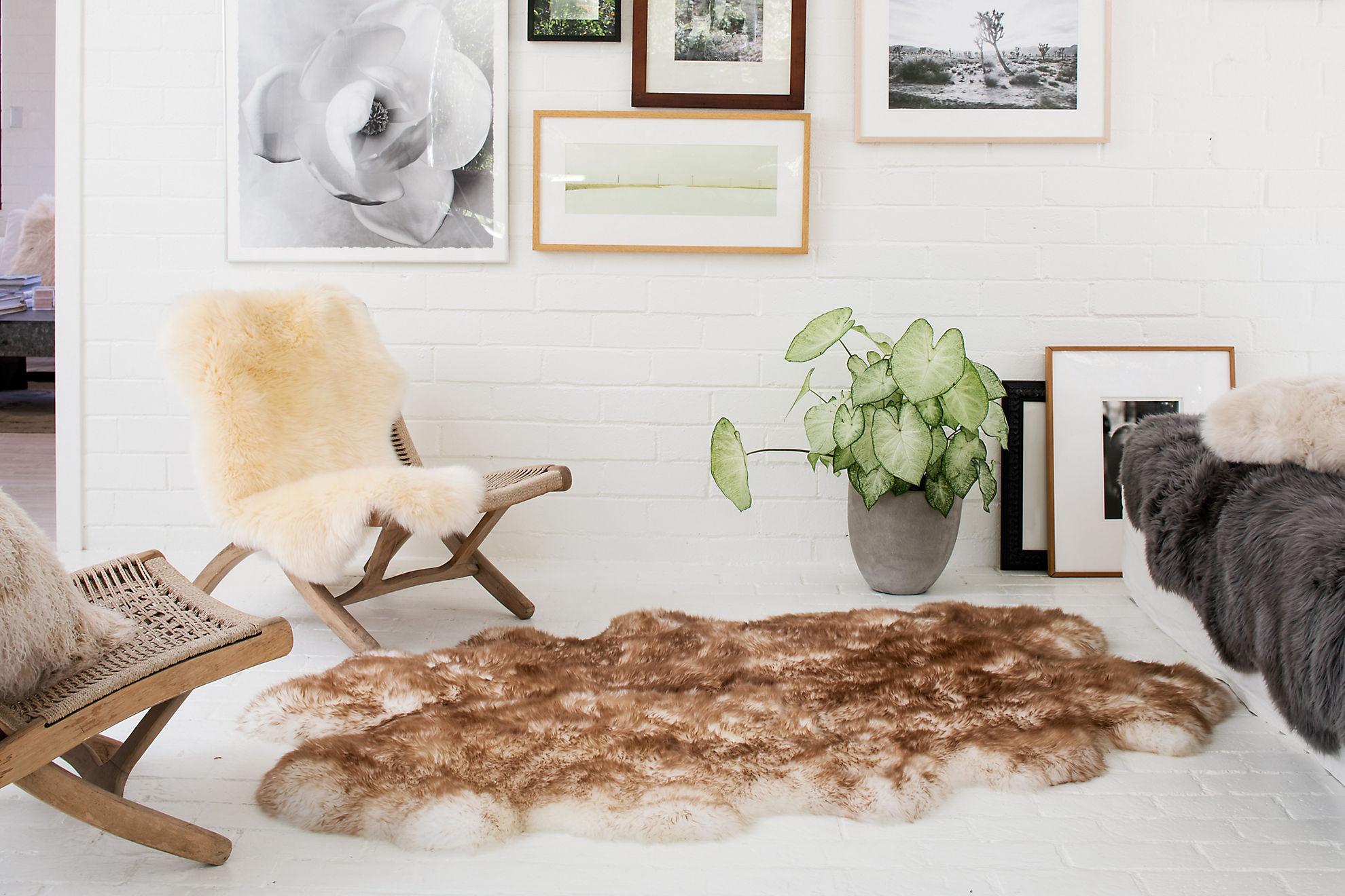 4-Pelt (4' x 6') Premium Australian Sheepskin Rug