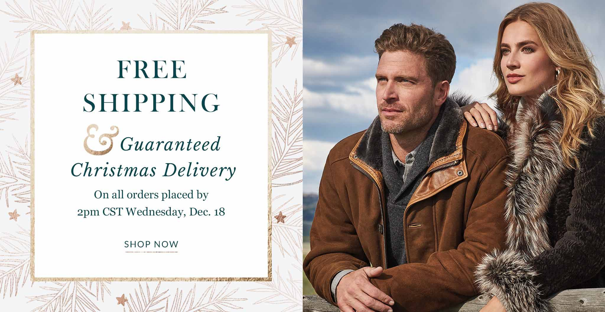 Free shipping and Christmas delivery